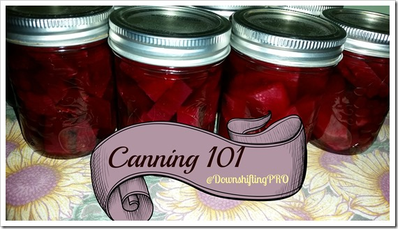 Lessons in Canning 101 – Pickled Beets #FallHarvest with